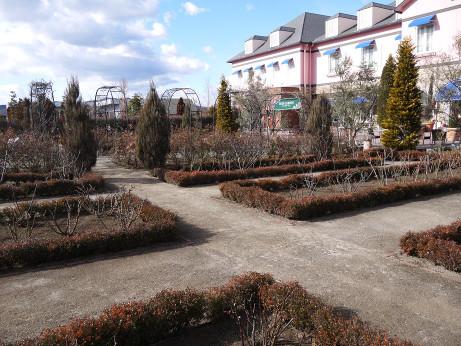 20150416_garden_4
