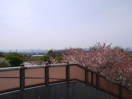 20150417_nagame