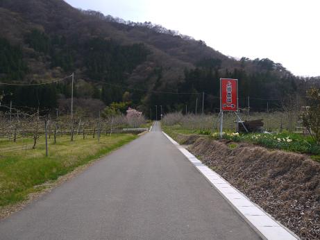 20150419_road