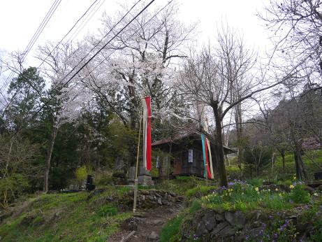 20150426_kannondou_1