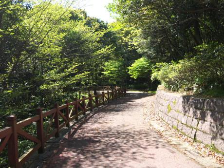 20150504_road_01