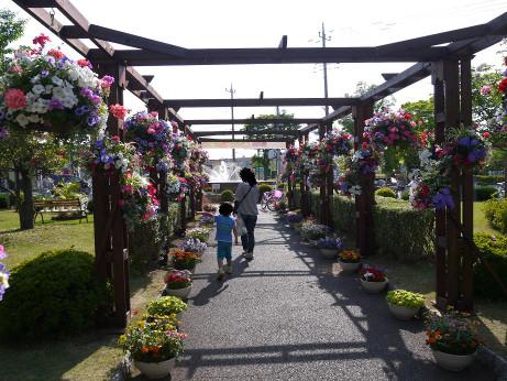 20150528_flower_4