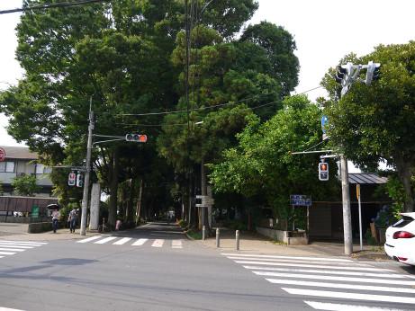 20150629_road_1
