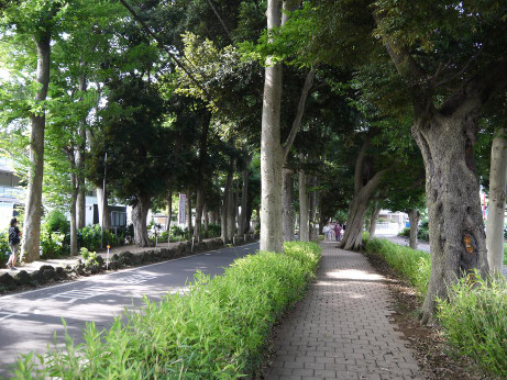20150629_road_2