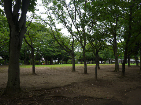20150728_park_02