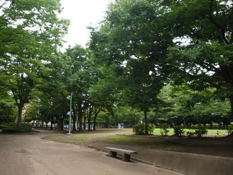 20150728_park_05