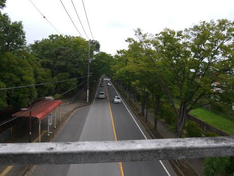 20150728_road_01