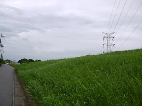 20150912_road_22