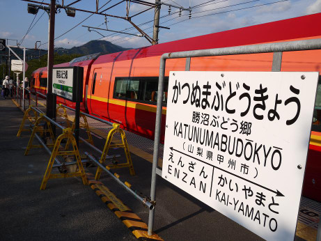 20150917_katunuma_st_1