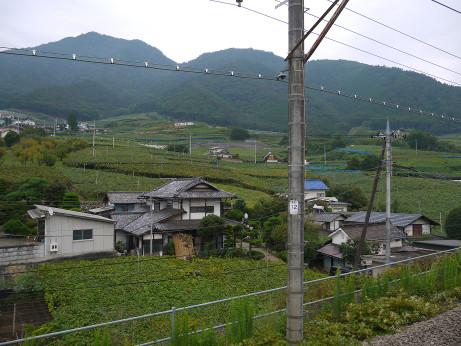 20150918_nagame
