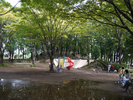20151001_myoubana_park_3