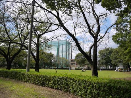 20151001_myoubana_park_6