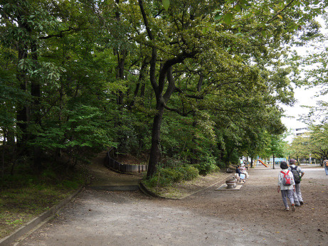 20151016_park_3