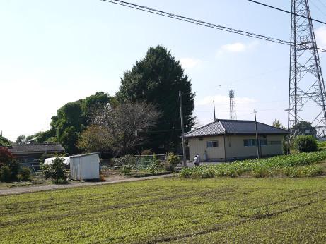 20151030_gobyou_1