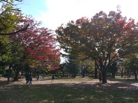 20151102_waseda_park