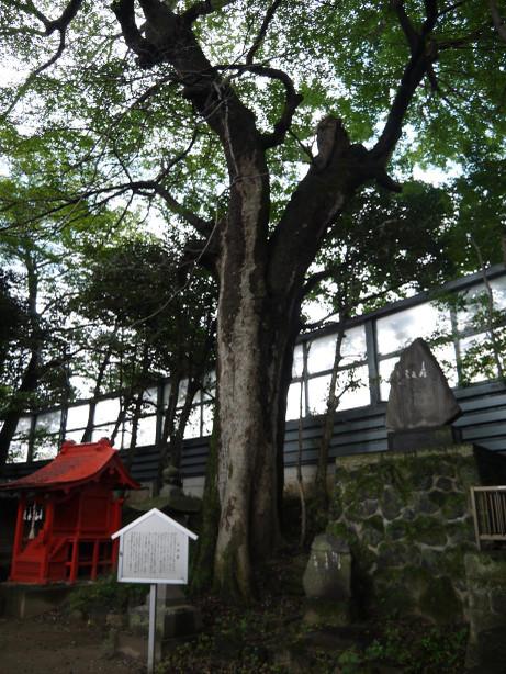 20151203_gosinboku