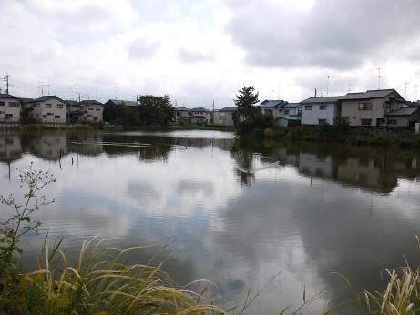 20151204_houjidoike_4
