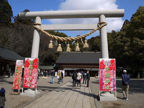 20160323_torii_2