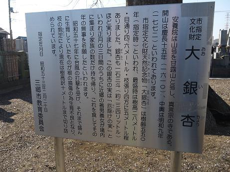 20170112_setsumei2