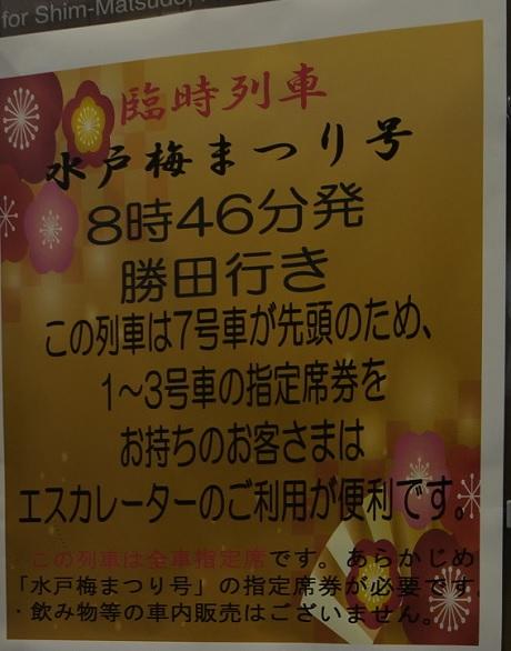 20190311_yoshikawa_info