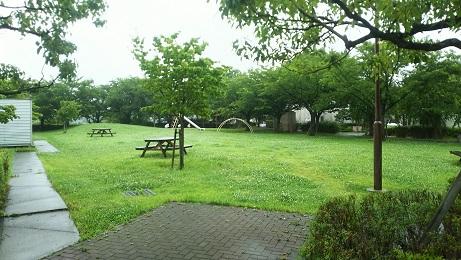 20190719_kiyomino_park