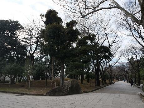 20200212_park_3