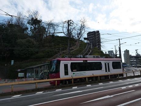 20200212_sakura_tram