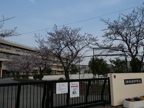20200410_hikoito_cyu_1