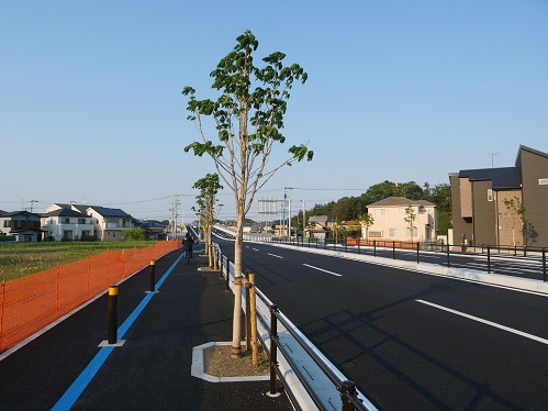 20200513_road_31