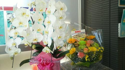 20200606_flower_1