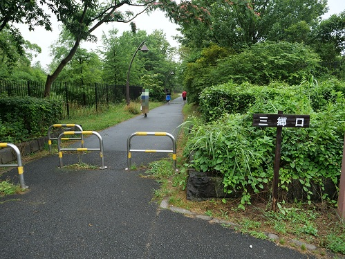 20200617_misato_enter