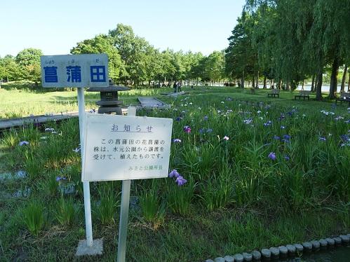 20200619_hanasyoubu_14