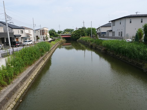 20200706_dai2_oobagawa_06