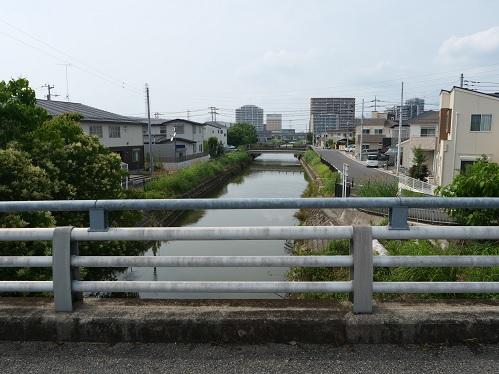 20200706_dai2_oobagawa_09