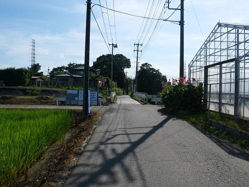 20200817_miyoshi_hashi_07