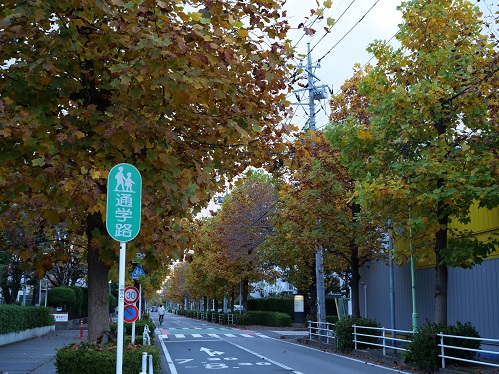 20201117_icyou_03