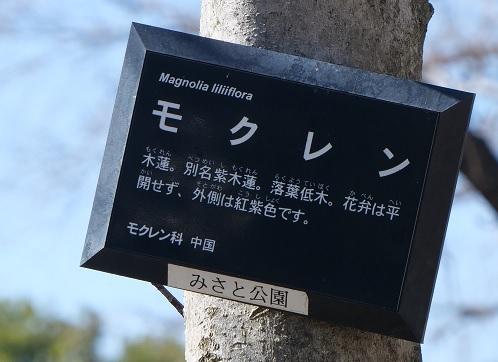 20210315_mokuren_info