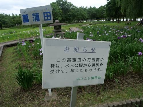20210608_syoubu_02