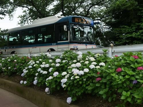 20210618_bus