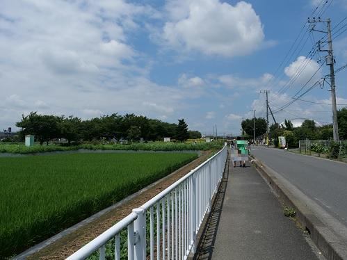 20210802_fuukei_1