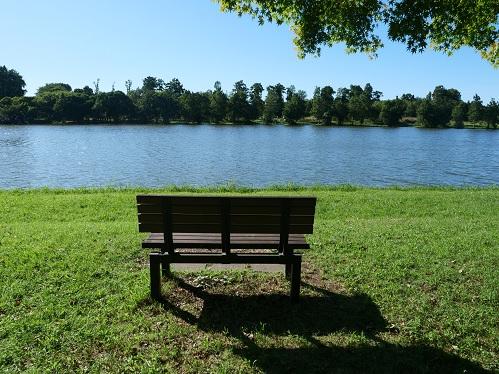 20210922_bench